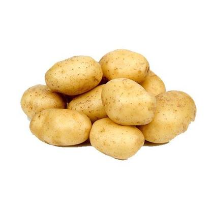 Picture of Baby Potato Netherlands