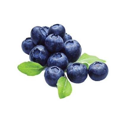 Picture of Blue Berry USA