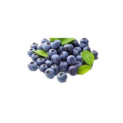 Picture of Fruit Filling Blueberry Fruit Pie         (  9.070 KG * 1  Pail )