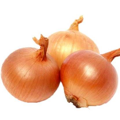 Picture of Onion Brown Turkey