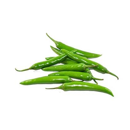 Picture of Chili Hot Green India