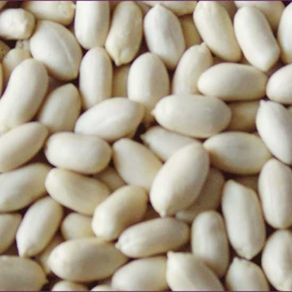Picture of Peanut Blanched China    ( 1 KG )