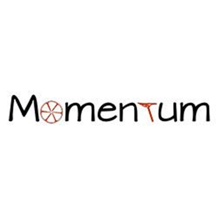 Picture for category Momentum