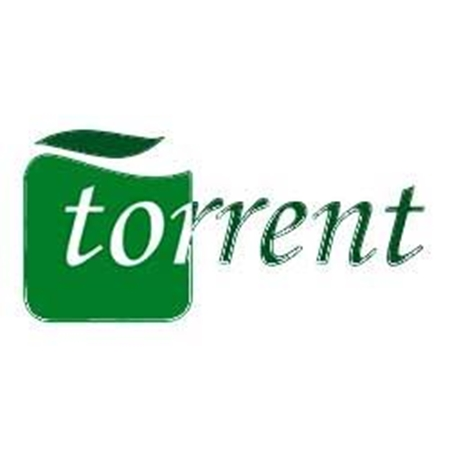 Picture for category Torrent
