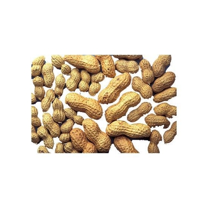Picture of Peanut India    ( 1 KG )