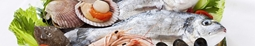 صورة للفئة أسماك ومأكولات بحريه