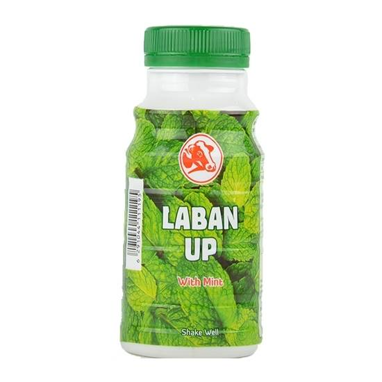 Picture of Laban Up P/Bottle (Mint)( 48 Pieces *  200 ML   )