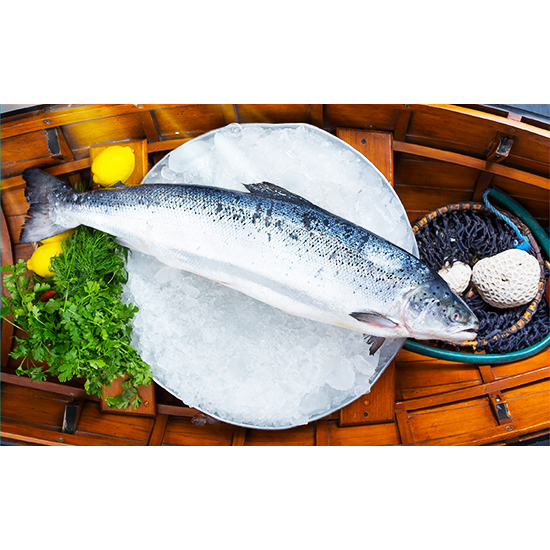 Picture of Salmon- 4-5  ( 1 KG )