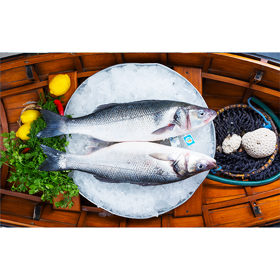 Picture of Sea Bass Meduim - 600-800   ( 1 KG )