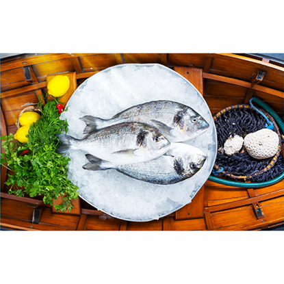 Picture of Seabream Fish Meduim -  600-800 ( 1 KG )
