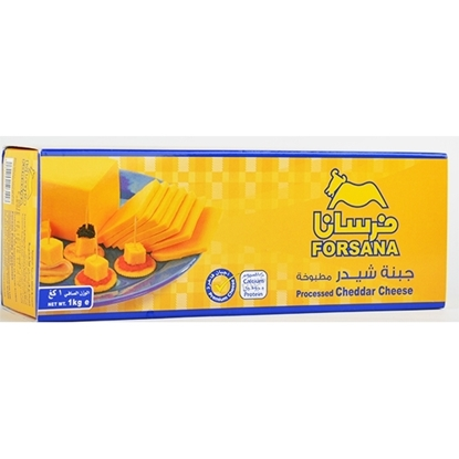 Picture of Forsan Cheese Cheddar Yellow Block ( 10 Pieces * 1000 GM )