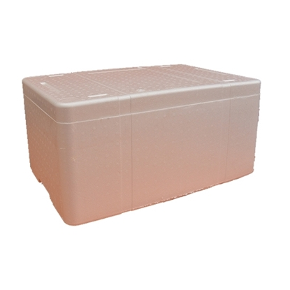 Picture of Fish Ice Box Large