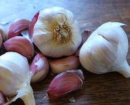 Picture for category Garlic