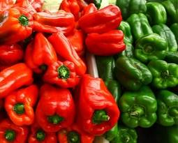 Picture for category Pepper