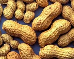 Picture for category Peanut