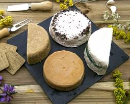 Picture for category Vegan Cheese