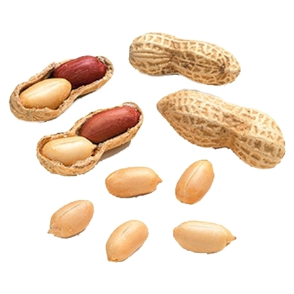 Picture of Peanuts Peeled ( 1000 GM )