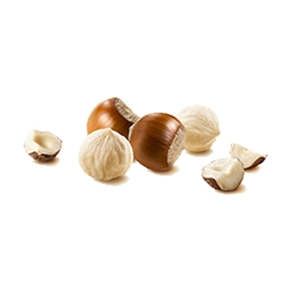 Picture of Hazelnut Peeled ( 1000 GM )