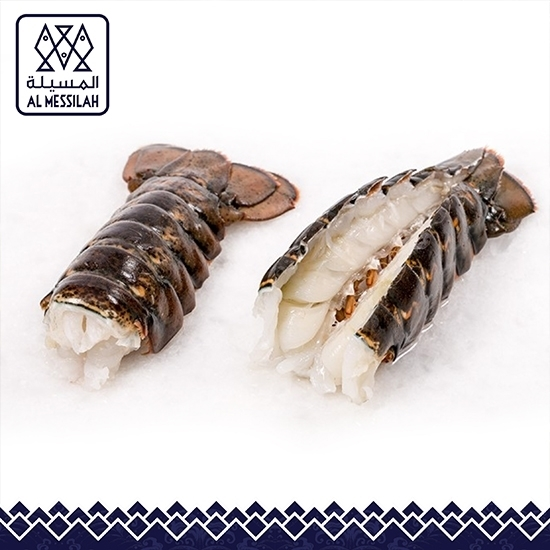 Picture of FrozenLobster Tail 8 -10 Ozs
