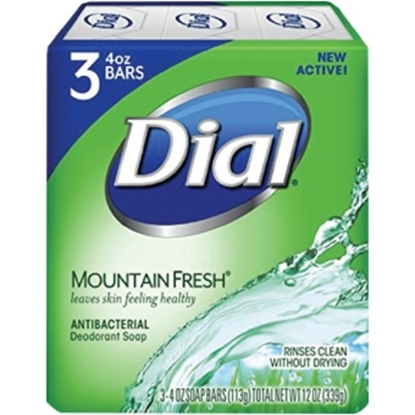 Picture of Dial Bar- Mountain Fresh - 113gm*3