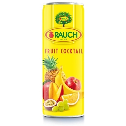 Picture of RAUCH Fruit Cocktail Multi Juice355ML