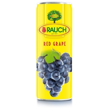 Picture of RAUCH Red Grape Juice 355ML
