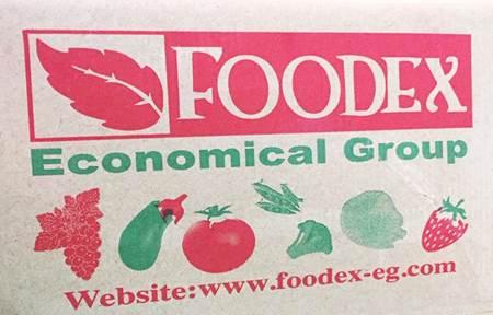 صورة للفئة FoodEX