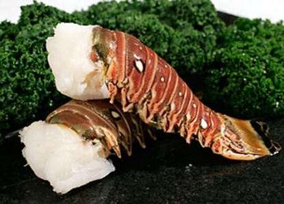 Picture of I LOBSTER TAIL CRIBBEAN 10-12 OZ  1 X 5 KG