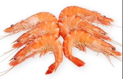 Picture of BF SHRIMP H/ON  30/40-  5 X 2.2 KG