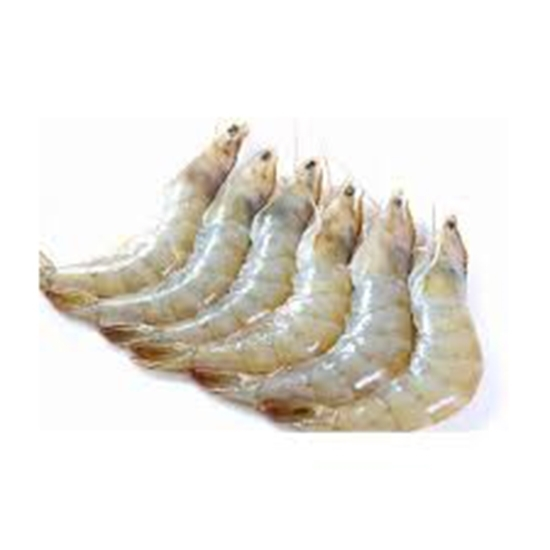 Picture of HEAD ON SHRIMP 10/20  5 X 2 KG