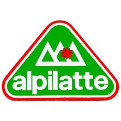 """Picture for category Formaggio Grana Padano Dop """"ALPILATTE"""""""