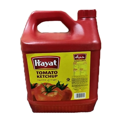 Picture of Hayat Ketchup HDPE Economy GCC 4x 5kg Gallon