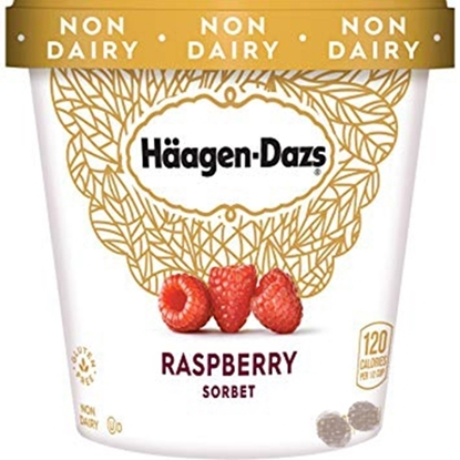 Picture of HD ICECREAM RASPBERRY SORBET 9.45 LTR