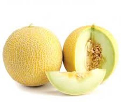 Picture of Sweet Melon Egypt