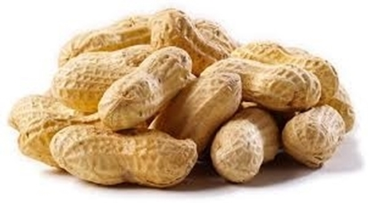 Picture of Peanuts in Shells       ( 1 KG )