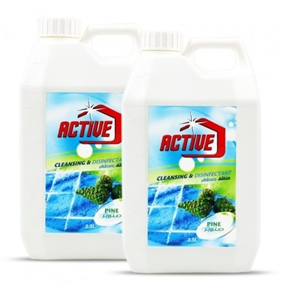Picture of ACTIVE CL.& DISINFECTANT PINE 2.5 LTR