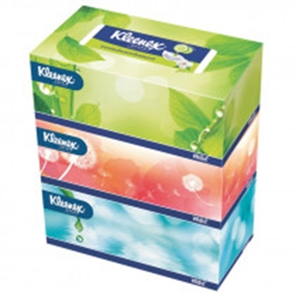 Picture of Paseo Facial Tissues 150 Sheets