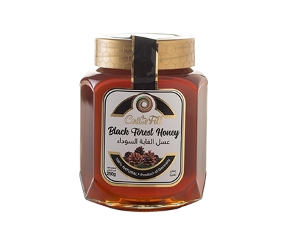 Picture of COAT & FILL Black Forset Honey 250g