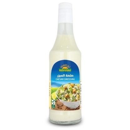 Picture of Caesar Dressing, 500ml, organic