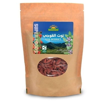 Picture of Goji Berries, 250g, organic