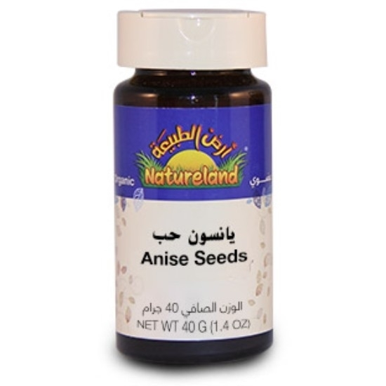 Picture of Anise Seeds, 40g, organic