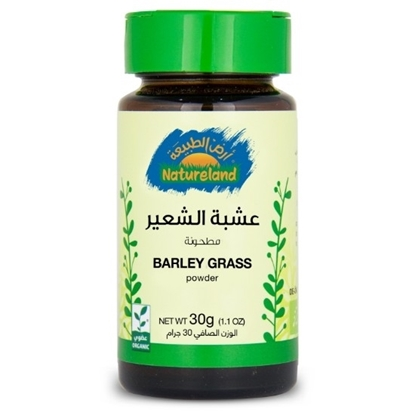 Picture of Barley Grass Powder, 30g, organic