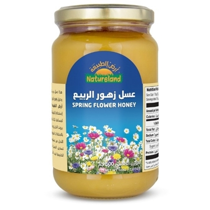 Picture of Spring Flower Honey, 500g, organic