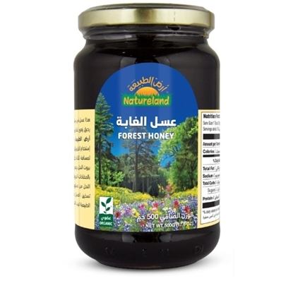 Picture of Forest Honey, 500g, organic