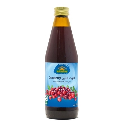 Picture of Cranberry Juice, 330 ml, organic