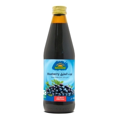 Picture of Blueberry Juice, 330 ml, organic