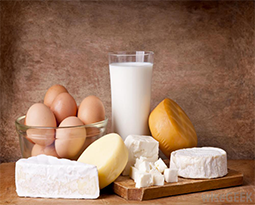 Picture for category Dairy And Eggs