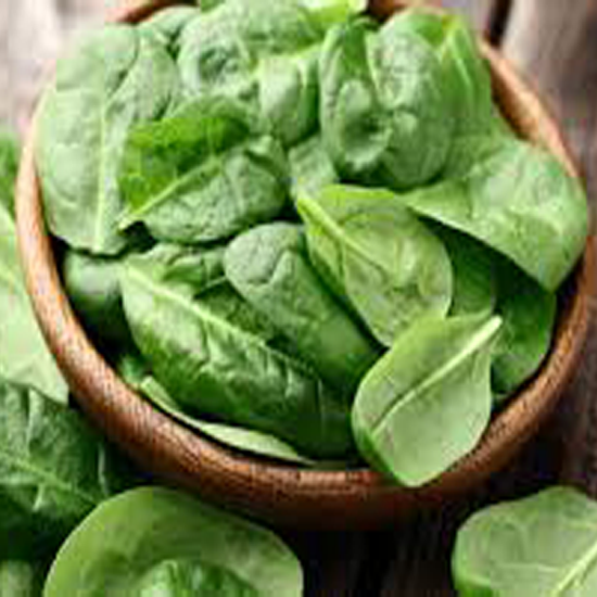 Picture of Baby Spinach - Holland