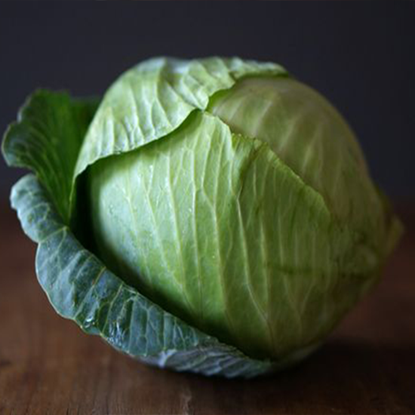 Picture of Cabbage White 1.250 KG - 1.750 KG