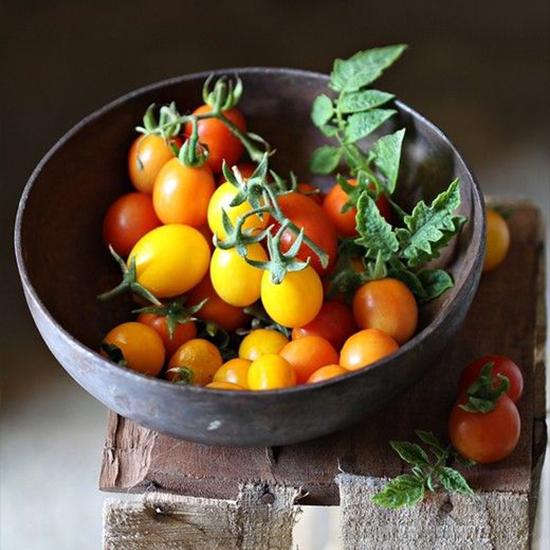 صورة طماطم شيرى اصفر